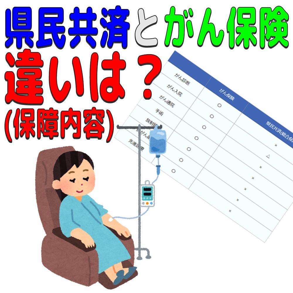医療 先進 県民 共済